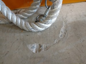 Shawshank redemption rope?