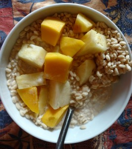 Rice cereal, coconut milk and fruit